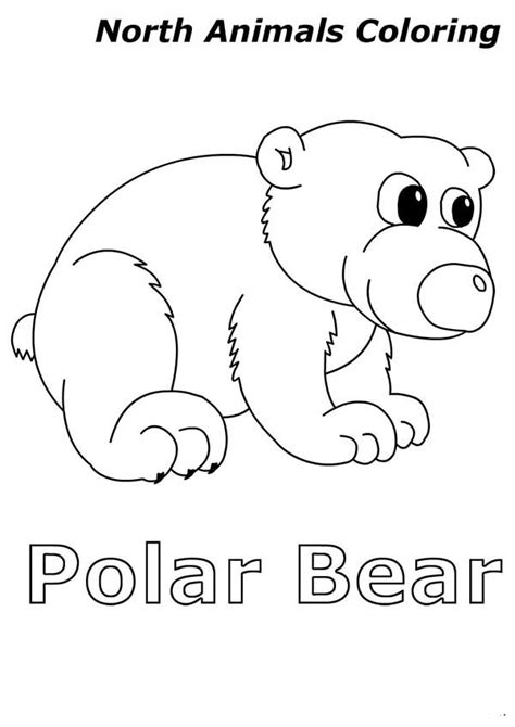 Cute Baby Polar Bear In Arctic Animals Coloring Page