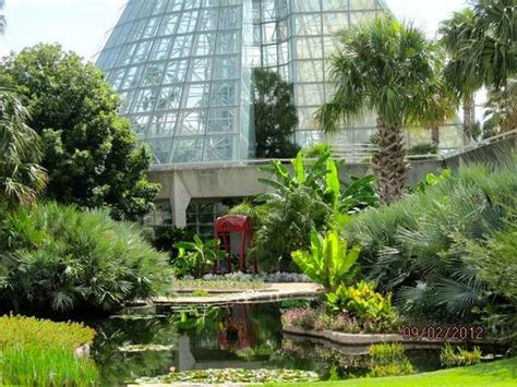Botanical Gardens San Antonio Great Place Picture Of San Antonio Botanical Garden San Antonio Tripadvisor