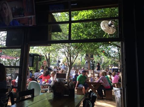 katy trail ice house plano dogs are welcome on the patio outback picture of the