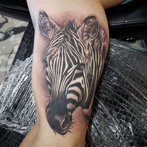 zebras tattoo 21 best work images on