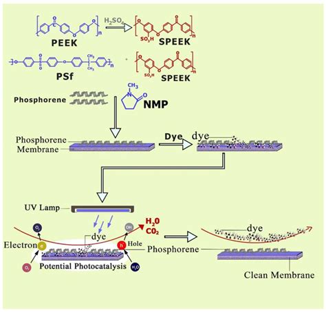 membranes free text treatment of membranes free text self cleaning nanocomposite membranes with phosphorene based pore