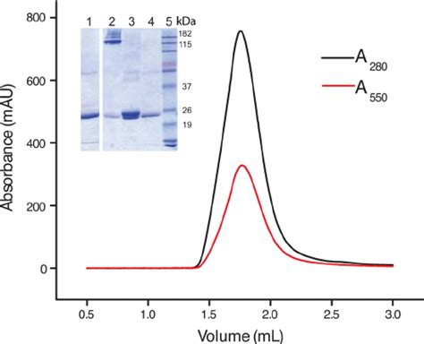 protein 280 nm protein absorption at 280 nm all articles about