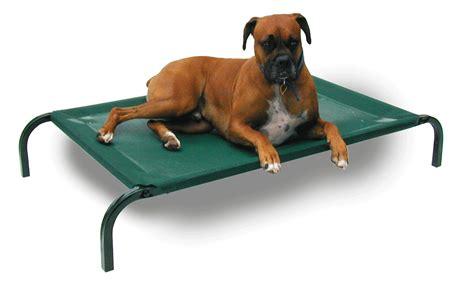 dog bed sores large dog bed 28 extra large dog sofa bed sofa dog bed