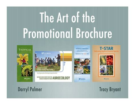 promotional brochure the of the promotional brochure