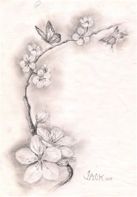 studio 3 tattoo dracones studio sketch cherry blossoms