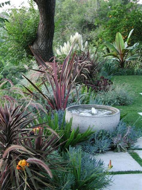 winterharte pflanzen für den garten 25 best ideas about winterharte pflanzen on