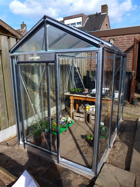 backyard greenhouses for sale the 25 best cheap greenhouse kits ideas on pinterest