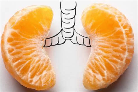 vitamina c la storia le funzioni dove si trova e i disturbi
