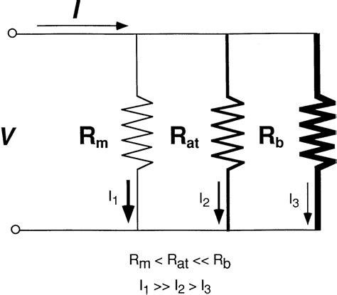 sunbeam electric blanket wiring diagram sunbeam portable