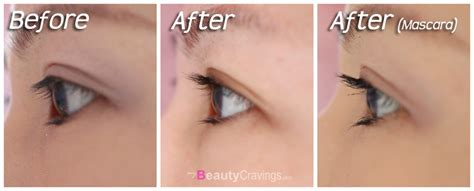 Shiseido Eyelash Serum japan must buy shiseido eyelash curler 187 mybeautycravings