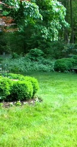 Mcclain Landscaping Landscaping In Greenville Sc Lawn Landscapers Greenville Sc