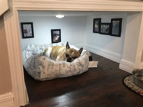 bedroom under the stairs man builds entire bedroom under stairs for his dog bored