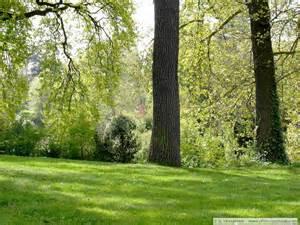 fond ecran jardins parcs 45948 wallpaper gratuit