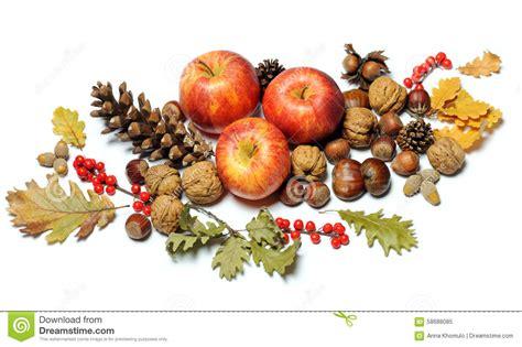 d fruit composition des fruits d automne image stock image 58688085