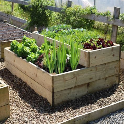 raised bed vegetable garden vegetable garden plans for beginners for healthy crops