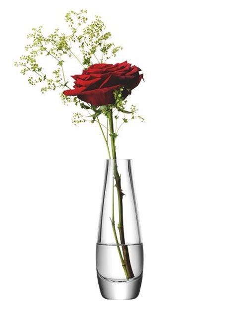 Single Stem Vases by Lsa Single Stem Vase Clear 17cm House Of Fraser