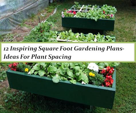 Square Foot Gardening Ideas 12 Inspiring Square Foot Gardening Plans Ideas For Plant Spacing The Self Sufficient Living
