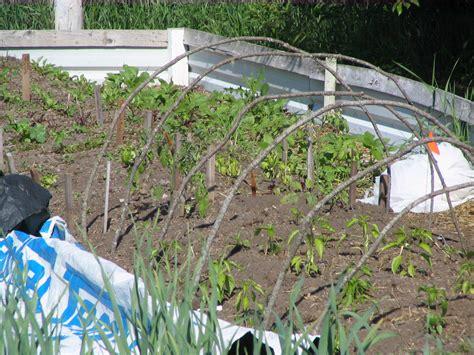 Gardener S Supply Hoops Garden Hoops Hoop Bending For Low Tunnels Large