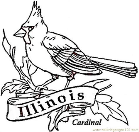 coloring page of florida state bird florida state bird coloring page