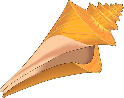sea shell clip sea shell clipart clipart best