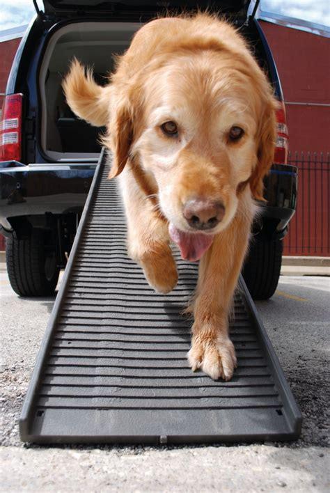 pedane per cani ra per cani non per la macchina