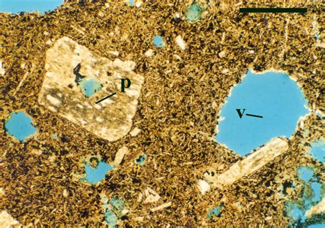 andesite thin section geology of the rhynie chert