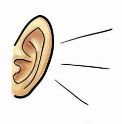 ear images