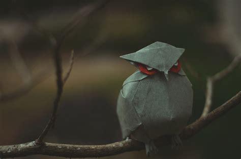 Origami Owl Shark Tank - owl
