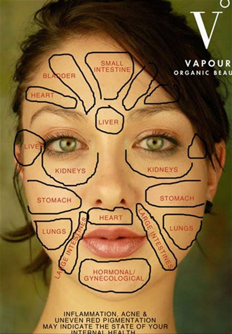 face mapping on pinterest estheticians facial massage this is the reason why pimples come out on your face
