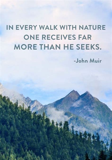 muir quotes best 25 muir quotes ideas on muir