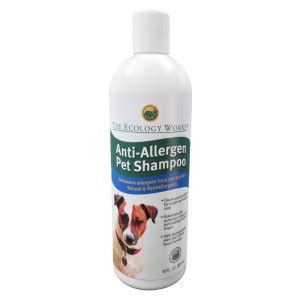 anti allergy dogs allergies in dogs common types symptoms testing medicine and home remedies dogs
