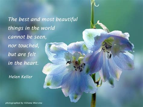 images of beautiful things flowers quotes images 107 quotes page 4