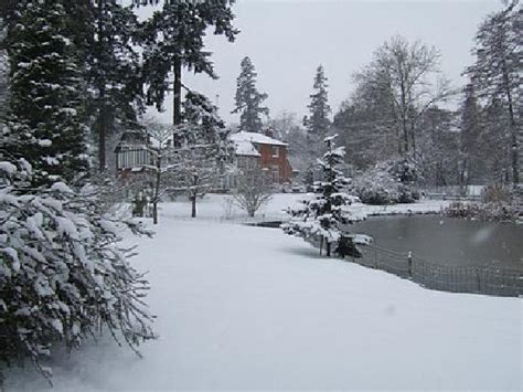 Winter Garden News by Winter Turf Maintenance Ivinghoe Turf News