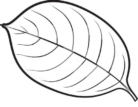 coloring page of a leaf leaves coloring part 4
