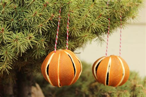 orange tree ornaments how to whole oranges for tree ornaments