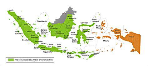 ectad indonesia fao  indonesia food  agriculture