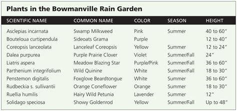 Garden Names by Garden Plants Names Decorating Clear