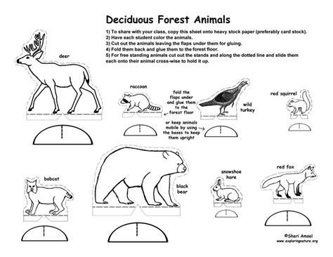 printable diorama animals deciduous forest diorama