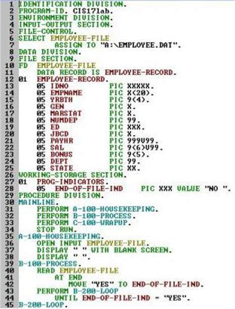 cobol sections structure of a cobol program