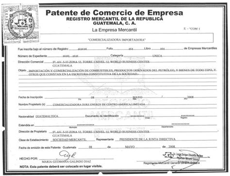 api patente de vehiculos 01 patente de empresa legalizado