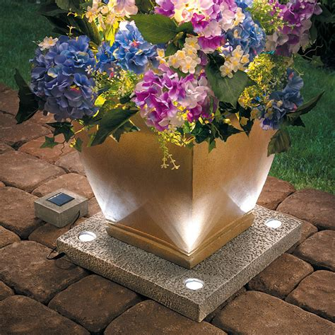 solar light up planter base the green