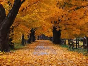 Landscaping Savannah Ga by Beautiful Autumn Season Wallpapers Hd Nice Wallpapers