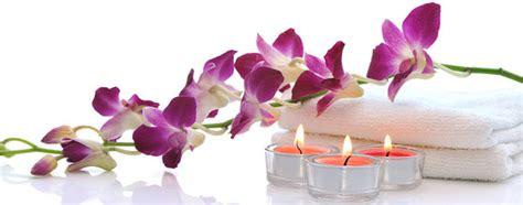 Imagenes De Flores De Bach | flores de bach fundaci 243 n sonr 237 a