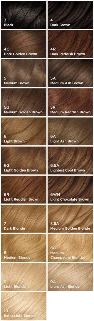 nice n easy color chart 17 best ideas about clairol hair color on pinterest