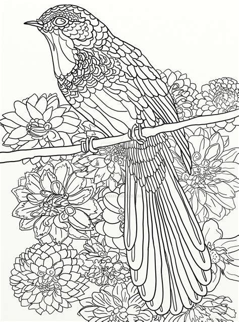 coloring books for adults australia page 16 of australian birds coloring book by