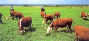 Ranch House Plan ranching the lbj way lyndon b johnson national