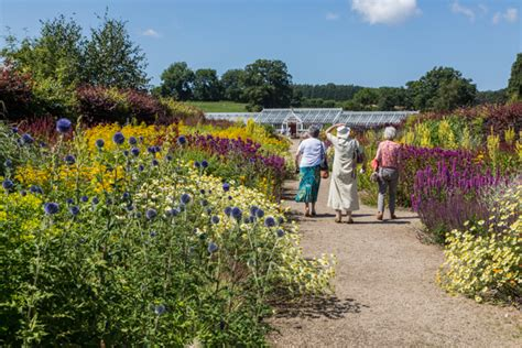 Helmsley Walled Garden Come And Discover Our Relaxing Garden Helmsley Walled Garden