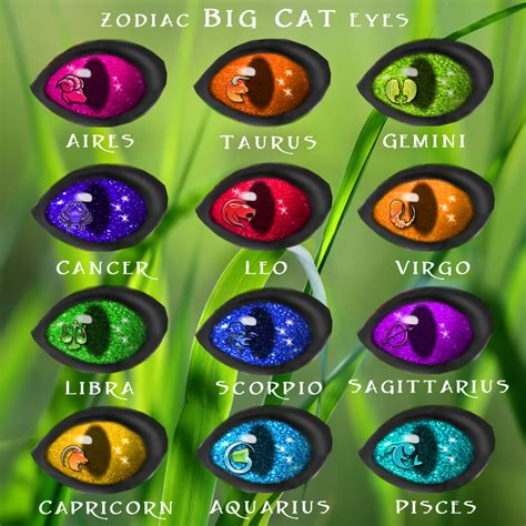 wolf eye color eye types wildkajaerablog