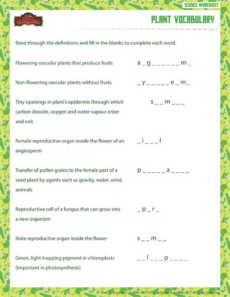 6th Grade Vocabulary Worksheets by Plant Vocabulary View Free Sixth Grade Science
