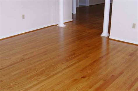 Best Hardwood Floors For Dogs Which Is Better Wood Or Laminate Flooring Vizimac